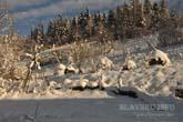 Славско, зимний пейзаж